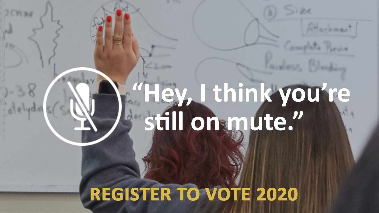 Hey I think you're still on mute. Register to vote 2020!